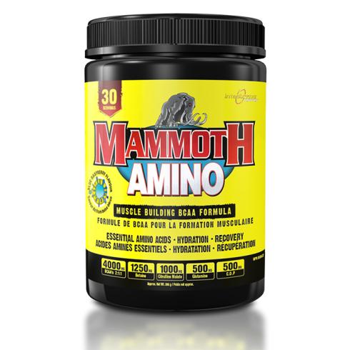 Mammoth Supplements Mammoth Amino 285g